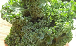 Make mine organic: Kale is number 8 on the Environmental Working Group's updated list of produce items most likely to contain pesticides.