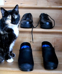 These shoes are made for workin': Marmalade checks out my Dansko pro clogs, front, which replace the culinary school-issued work shoes.gs, front