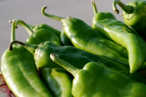 New Mexican Hatch chiles have a fleeting season, but roasting preserves the harvest.